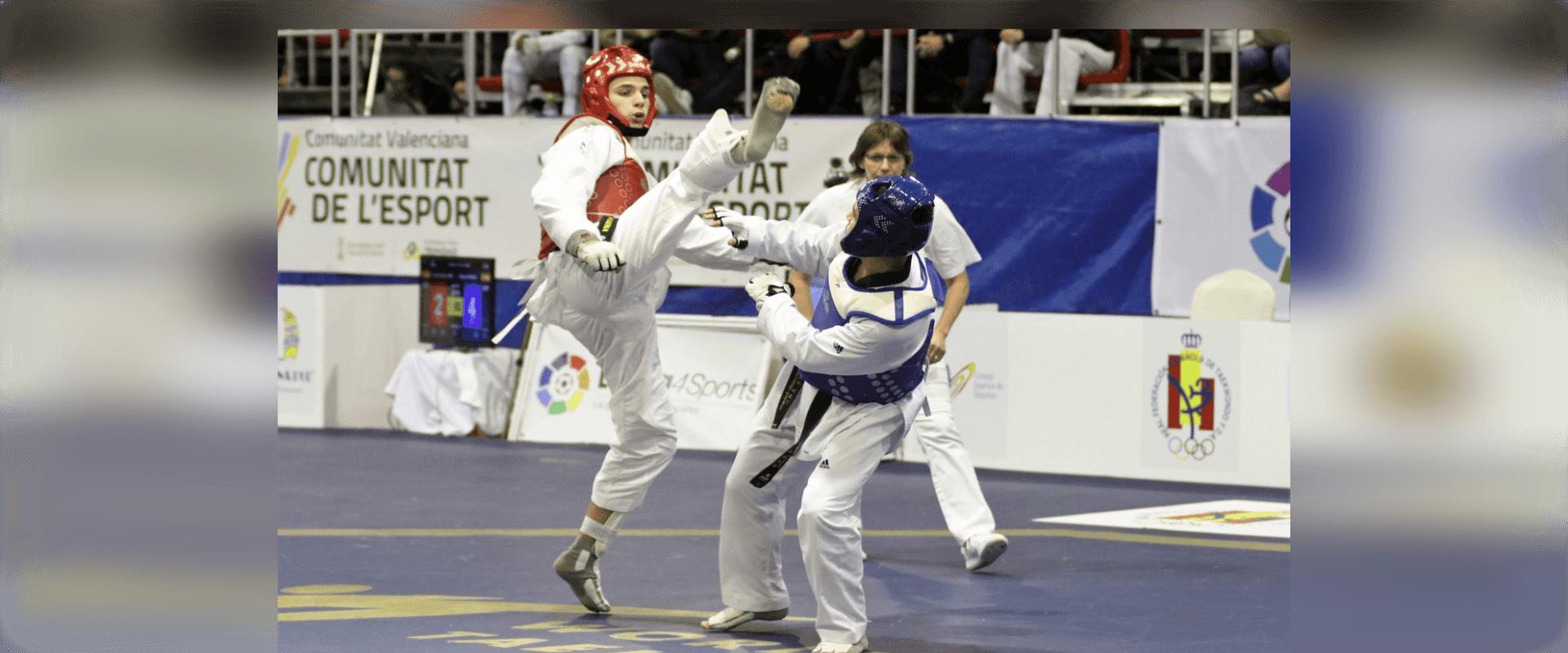 Combate Taekwondo Alan